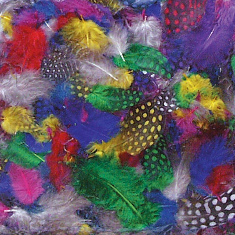 Creativity Street® Multi-Color Guinea Feathers